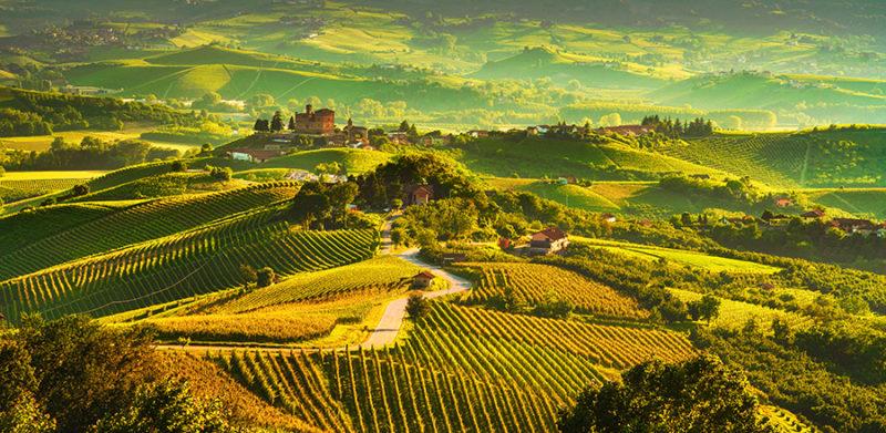 Zonsondergang op de Langhe wijngaarden. Piëmonte Nood-Italië.
